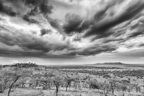 Tansania: Serengeti