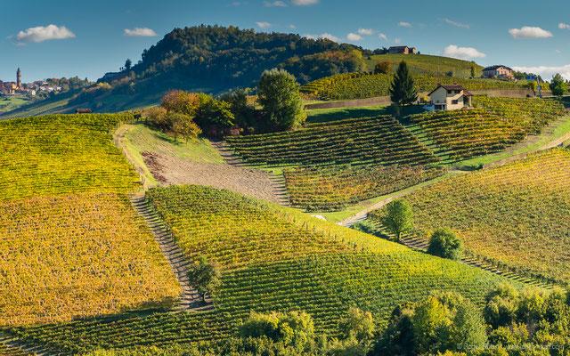 Piemonte: Zwischen La Morra und Barolo