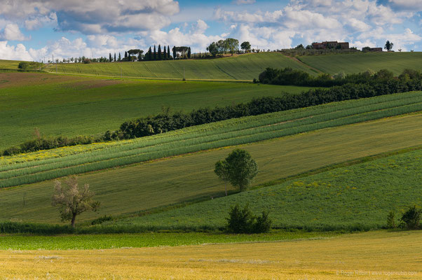 Toscana: Val d'Orcia