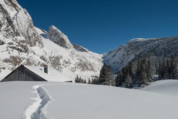 Toggenburg: Alp Fros (oberhalb von Alp Gamplüt)