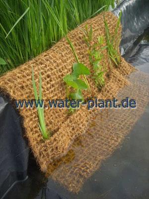 Pflanztaschen schützen die unterliegende Teichfolie