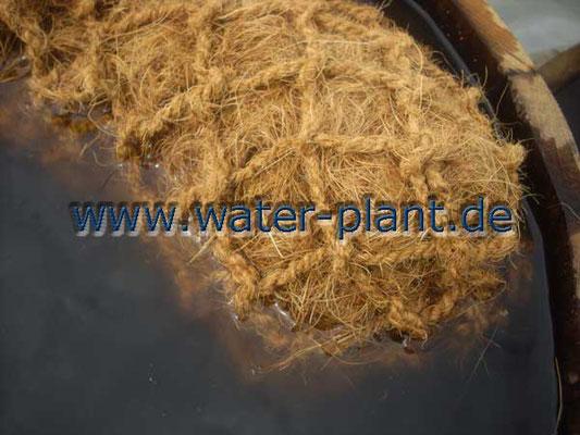 Pflanzrolle aus Kokosfaser