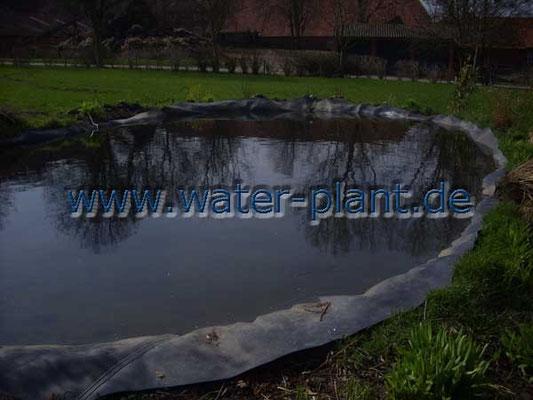bloßliegende Teichfolie sieht hässlich aus und trennt Teich und Garten voneinander