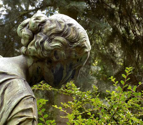 Rosenmädchen Wadere Bild: Susann Wuschko