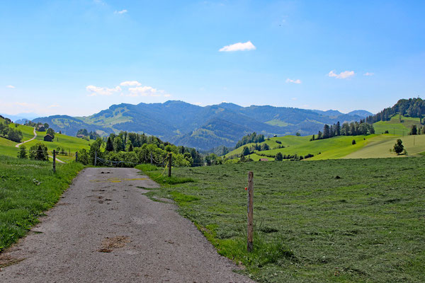 Die Drüradbrüedere unterwegs im Toggenburg