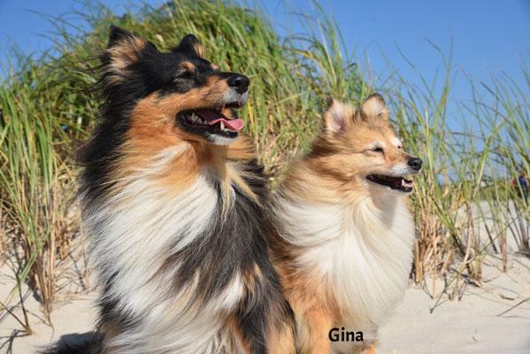 Gina (Tala)