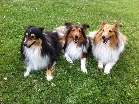 Alisha, Olliver (Olando) und Uselia (Lina) of Atocha