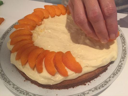Aprikosenschnitze auf den Kuchen legen