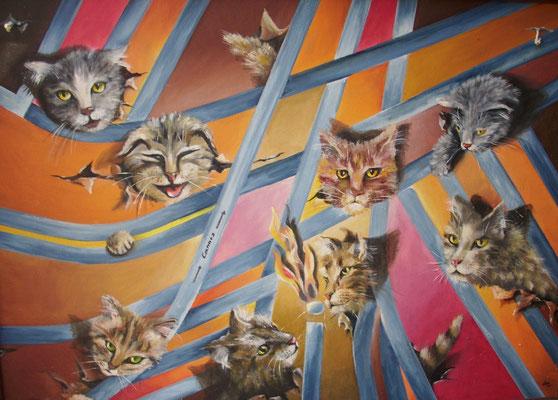 Cannes Katzen 50x70