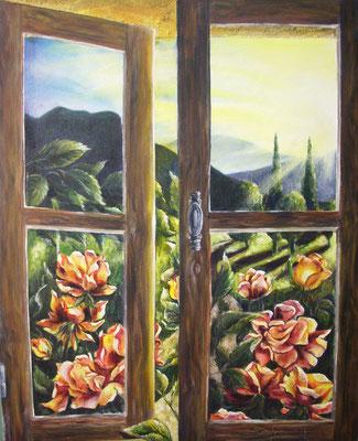 Fenster 50x62