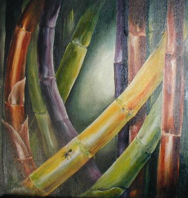 Bambus3 40x40