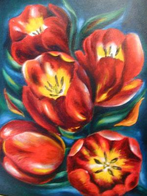 Tulpen 33x41