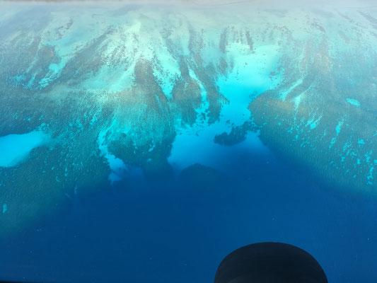 groeste-riff-von-hawaii