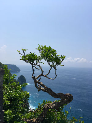 banah-cliff-point-aussicht