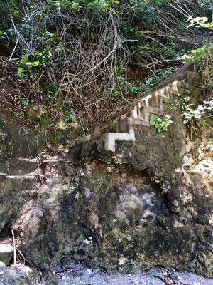 treppe-pandan-bach