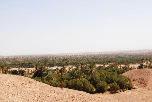 oase-marokko