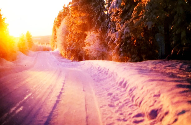 lappland-winter-starssen