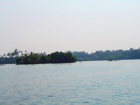 madu-river