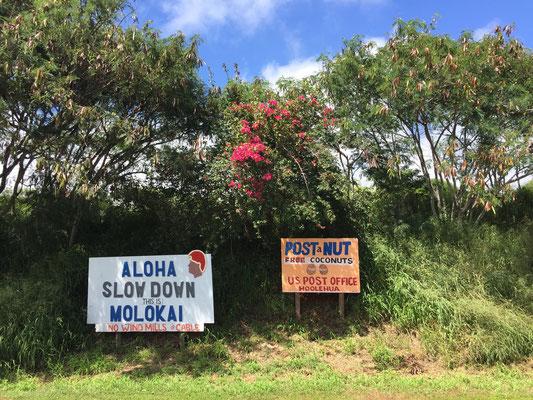 slow-down-in-molokai