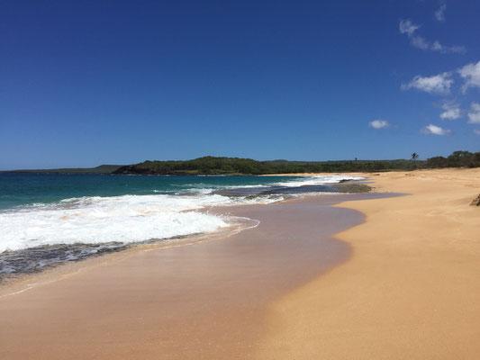 papohaku-beach