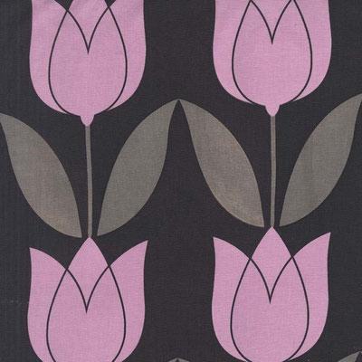 tulip orchid