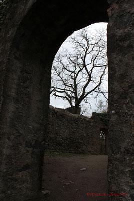 Diese Fotos sind bei einem späteren Besuch entstanden. #Frankenstein #ghosthunters #paranormal