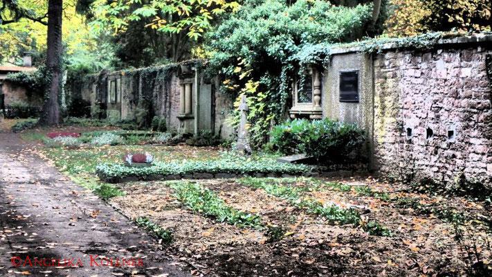 26 #Hauptfriedhof #Frankfurt #Landschaft #Ghosthunters