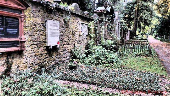 25 #Hauptfriedhof #Frankfurt #Landschaft #Ghosthunters