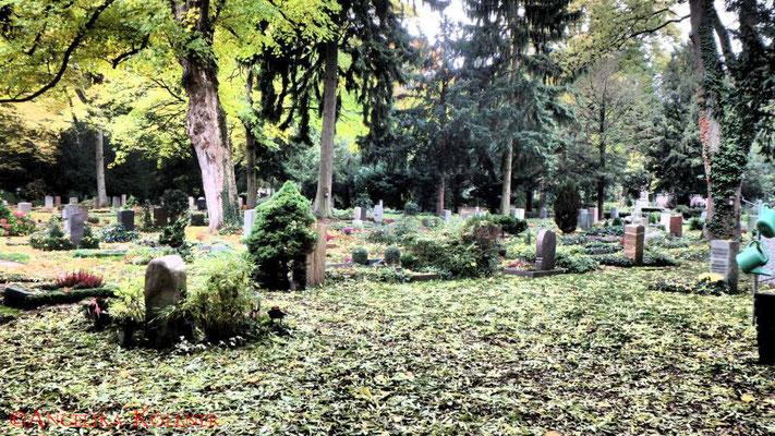 33 #Hauptfriedhof #Frankfurt #Landschaft #Ghosthunters