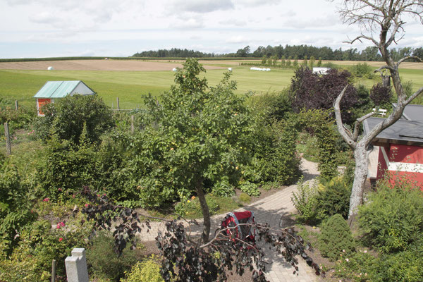 Wohnung Walnuss - Blick in den Gästegarten