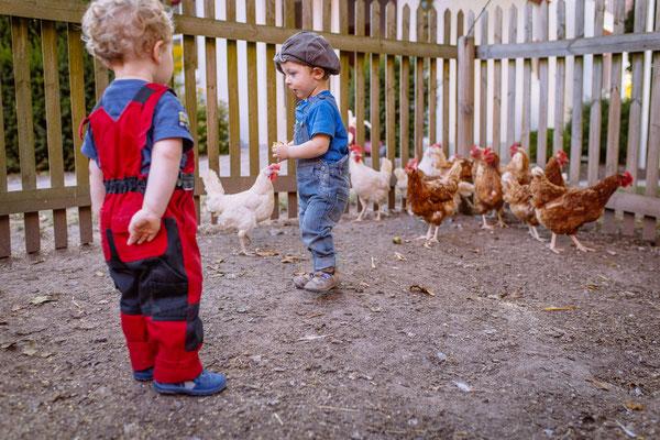 Hühner auf dem kleinen Bauernhof