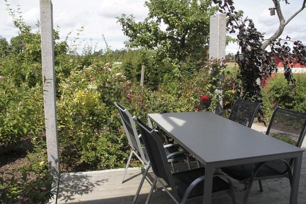 Wohnung Buche - Terrasse