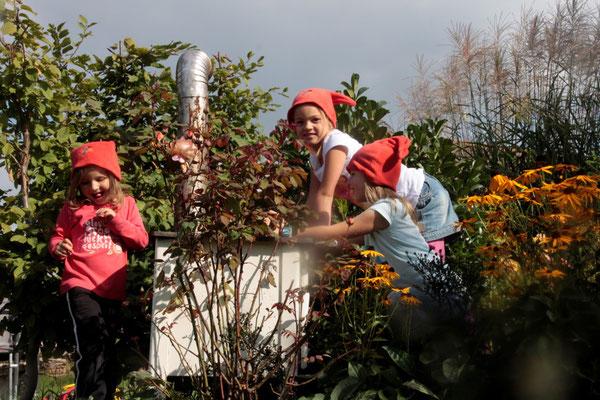 Zwergenkinder im Gästegarten