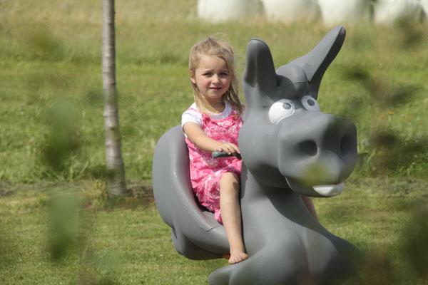 Wipptiere - Esel und Schwein - im angrenzenden Spielbereich des Gästegartens