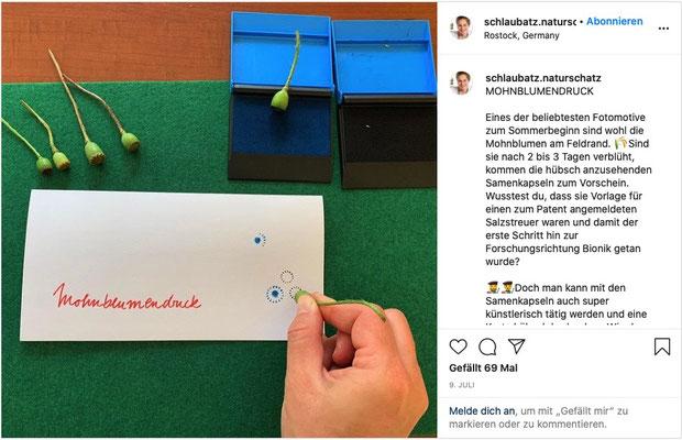 Beliebt auf Instagram: Der Mohnblumendruck