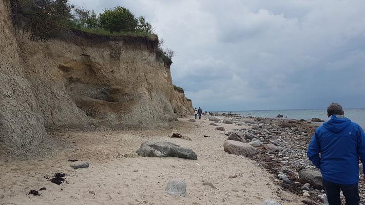 Die Steilküste von Heiligenhafen