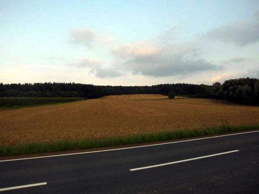 Blick auf dem Bückeberg (Schaumburger Land) nahe Stadthagen