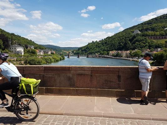 Der Neckar (Brücker bei Heidelberg)