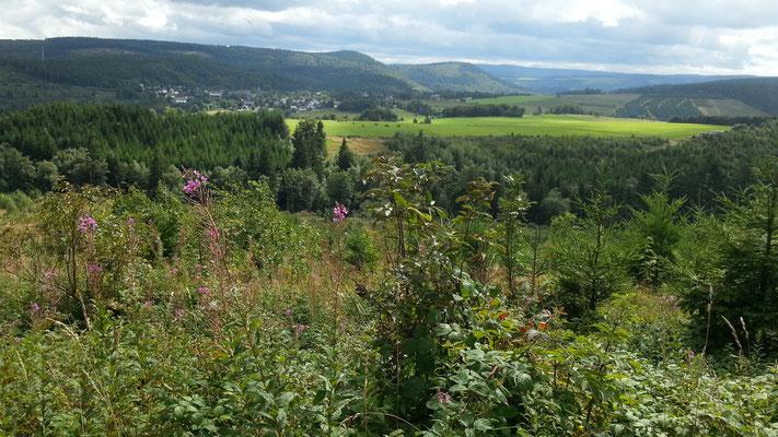 Blick auf Küstelberg