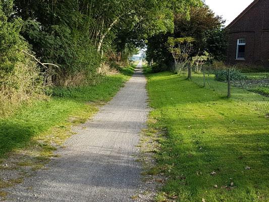 Blick auf die ehemaligen Tidebahn Jever-Harle