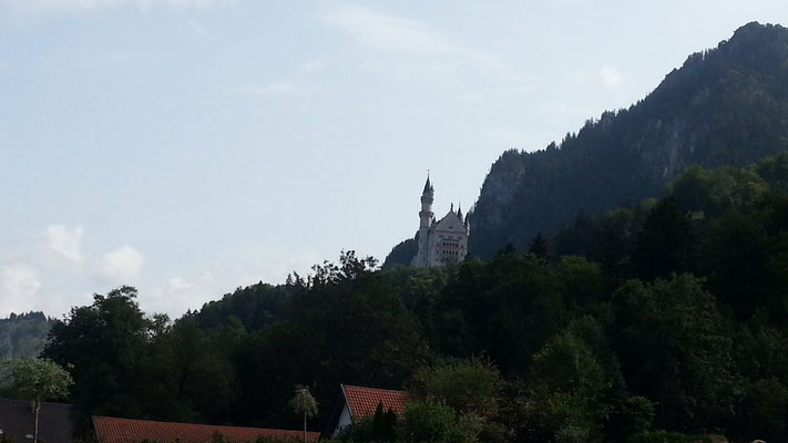 Blick auf Schloss Neuschwanstein
