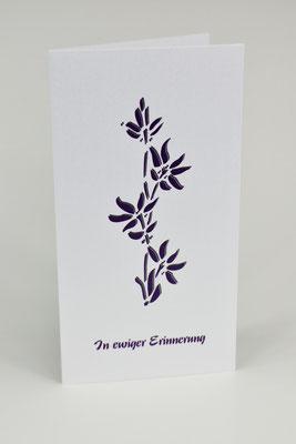 Violett Art, TR04
