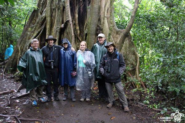 Im Nebelwald von Monteverde (auf der Rundreise November/Dezember 2016)