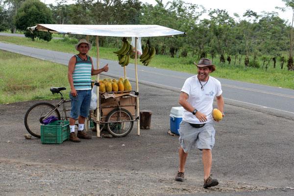 Papaya-Stand (auf der Rundreise November/Dezember 2016)