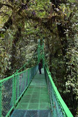 Allan auf der Brücke in Monteverde (auf der Rundreise November/Dezember 2016)