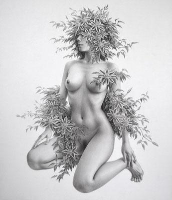 花の王・2015・F10・鉛筆、透明水彩、ケント紙
