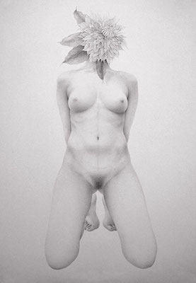 花遊び / 2012 / pencil on paper / 1030×728mm