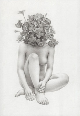 凌霄葉蓮 / 2013 / pencil on paper / 227×158mm