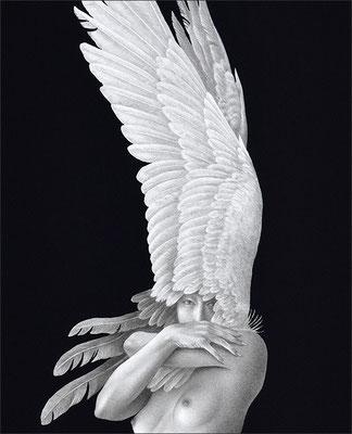 「夜半の鳥」部分