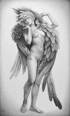 「Metamorphose -Bird's heart-」 / 455×273mm / Pencil on paper.